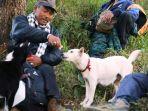 anjing-gunung-agung_20171009_162924.jpg