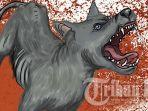 anjing-rabies-di-bali-singaraja.jpg