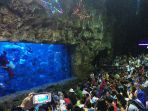 atraksi-feeding-show-with-santa-di-seaworld_20161226_201452.jpg