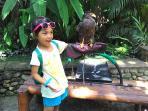 Serunya Rekreasi Keluarga di Bali Zoo, Berebut Foto Bareng Satwa Jinak