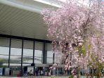 bandara-internasional-narita-jepang.jpg