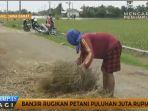 banjir-rugikan-petani-puluhan-juta_20161118_141640.jpg