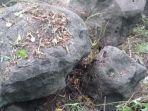 batu-prasejarah-ditemukan-di-garut-diduga-peninggalan-zaman-prabu-siliwangi.jpg
