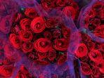 berburu-mawar-jelang-hari-kasih-sayang_20180213_162043.jpg