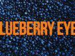 berikut-link-download-mp3-lagu-berjudul-blueberry-eyes-dari-max-feat-suga-bts.jpg