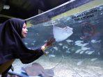 berwisata-ke-jakarta-aquarium_20181127_224748.jpg