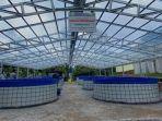 Genjot Produksi Usaha Budidaya Ikan Lewat Sistem Bioflok