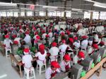 buruh-pekerja-karyawan-HM-Sampoerna-di-Krakasan-Dji-sam-soe.jpg