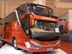 bus-scania-shd-skyview-coach_20170818_055100.jpg