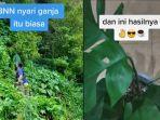cerita-anggota-bnn-berburu-tanaman-hias-di-hutan-sempat-dicari-pimpinan-setelah-videonya-viral.jpg