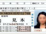 Pengambilan SIM di Jepang Dimungkinkan Lewat Sekolah Mengemudi, Tak Perlu ke Kantor Polisi