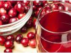 Dari Mengatasi Ketombe hingga Pewarna Alami, Ini Manfaat Buah Cranberry untuk Kesehatan Rambut