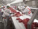 daging-siap-ekspor-produksi-rusia1.jpg