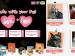Mars Petcare Kampanyekan Date With Your Pet, Ajak Berbagi Kebaikan Melalui Program Adopsi Hewan