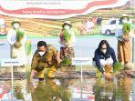 Demplot Phonska OCA Gunakan Lahan 10,5 Ha di 15 Kecamatan