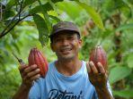 desa-nusasari-di-jembrana-bali-jadi-desa-devisa-pertama-ekspor-komoditas-kakao.jpg