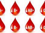 diet-berdasarkan-golongan-darah.jpg