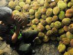 durian_20171117_162357.jpg