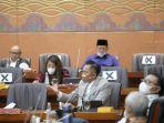 Soroti soal Holding Ultra Mikro, Ibas Ingatkan Menteri untuk Pecahkan Masalah Tanpa Masalah