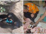 Sempat Dikira Sarang Ular, Goa yang Ditemukan Warga di Bondowoso Ternyata Makam Zaman Megalitikum