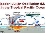 fenomena-madden-julian-oscillation-mjo.jpg