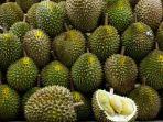 festival-durian-sinapeul-2017_20171204_192244.jpg