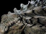 fosil-dinasaurus-berusia-110-juta-tahun_20170523_210306.jpg