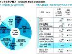 grafik-impor-jepang-indonesia-tahun-2020.jpg