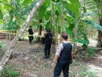 Granat Nanas Diduga Peninggalan Perang Dunia Dimusnahkan, Hentakan Udara Capai 50 Meter