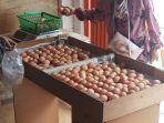 harga-telur-ayam-turun-capai-rp-22500kg_20210110_131856.jpg