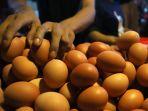harga-telur-turun-di-masa-pandemi-covid-19_20200502_221025.jpg