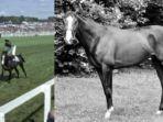 hari-ini-dalam-sejarah-8-februari-1983-pencurian-kuda-balap-shergar-bernilai-rp-122-miliar.jpg