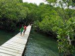 hutan-mangrove-lirang-di-bitung-sulawesi-utara.jpg