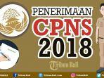 ilustrasi-cpns-2018-di-pemkot-denpasar_20181015_094858.jpg