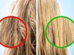 ilustrasi-hanya-menyisir-bagian-ujung-rambut.jpg