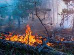 ESRI Gagas ESSC, Program Respons Bencana, Dukung Pemerintah Tangani Karhutla