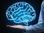 Kenali Gejala dan Penyebab Penyakit Radang Otak, Perkuat Daya Tahan Tubuh Bisa Jadi Solusi