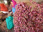 Jadi Rahasia Tukang Sayur, Begini Cara Menyimpan Bawang Merah Agar Segar Tahan Hingga 3 Bulan