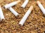 DPR Bilang, Kenaikan Tarif Cukai Rokok Berpotensi Picu PHK di Industri Hasil Tembakau