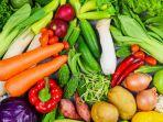 Ada yang Sebut Sayur Hambat Usaha Menurunkan Berat Badan, Apa Itu Benar? Ini Kata Ahlinya