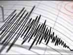 Gempa Magnitudo 3,5 Guncang Wahai Maluku Tengah, Getarannya Dirasakan juga di Sawai