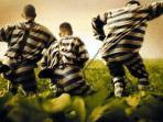 ilustrasi-tahanan-kabur_20150825_113031.jpg