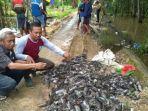 inilah-ribuan-ekor-tikus-di-desa-tambakhanyar-yang-berhasil-ditangkap-pada-kegiatan.jpg