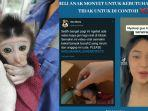 jaan-angkat-bicara-soal-video-selebgram-beli-bayi-monyet-sangat-tidak-etis.jpg