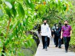 jokowi-di-hutan-mangrove.jpg