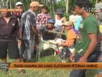 karapan-kambing-di-lumajang_20161025_171932.jpg