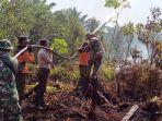 Awas, Pembakar Hutan Kini Bisa Terpantau CCTV Canggih dengan Jangkauan Luas