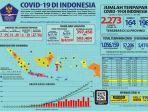 kasus-positif-virus-corona-covid-19-di-provinsi-kalimantan-timur-mencapai-sejumlah-30-orang.jpg
