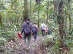 Wamen LHK Sebut Liburan di Hutan Bisa Tingkatkan Imun Tubuh