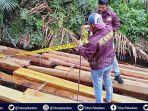 kayu-diduga-hasil-illegal-logging-di-pekanbaru.jpg